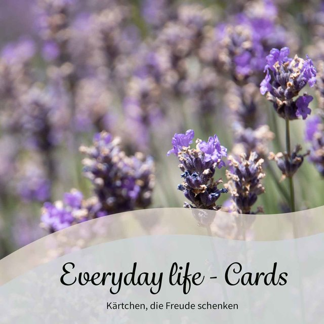 everyday-live-cards.jpg